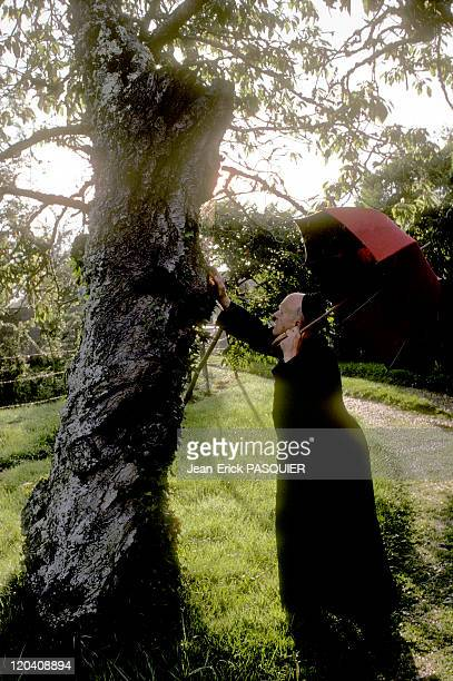 The Priest And Tree In France In 1987 From my tree a saw happy a Country Priest Father Quintin Montgomery Wright Scottish originParish priest of...