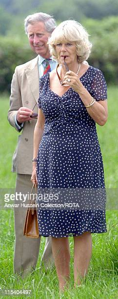 TRH The Prince of Wales and The Duchess of Cornwall view the Welsh Black herd at Cwm Berem Farm Pontyberem Dyfed Tuesday July 12 2005 The Prince of...