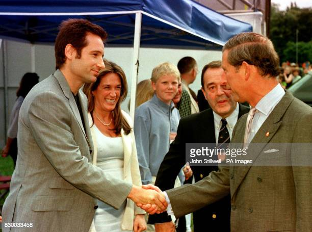 The Prince of Wales shakes hands with American actor David Duchovny during today's Party in the Park in aid of the Prince's Trust