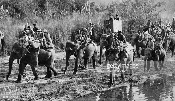 The Prince of Wales tiger shooting in India the Indian Tour 1921 The future King Edward VIII on a tiger hunt Illustration from George V and Edward...