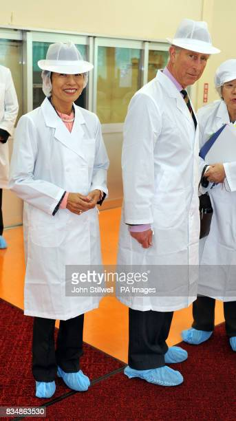 The Prince of Wales tours a tea factory with Princess Takamado during a visit to the village of Shinanomachi in central Japan
