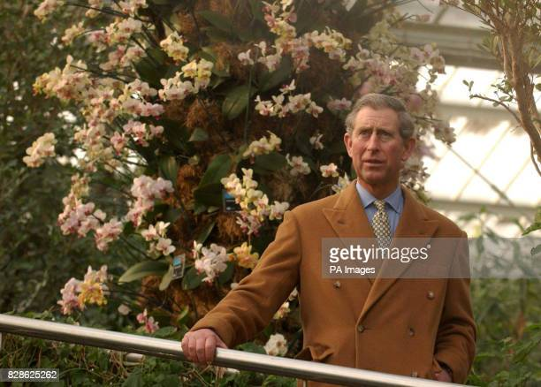 The Prince of Wales visits Kew Botanical Gardens west London * The Prince was opening the Nash Conservatory a 19th century glasshouse formerly home...