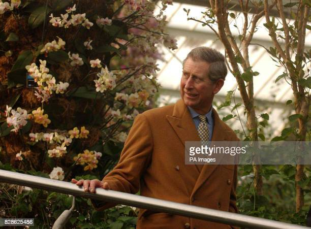 The Prince of Wales visits the Palm House at Kew Botanical Gardens west London * The Prince was opening the Nash Conservatory a 19th century...