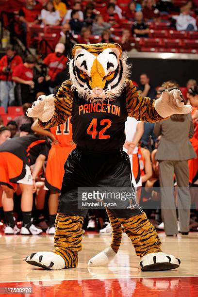 The Princeton Tigers mascot looks on during during the First Round of the NCAA Women's Tournament against the Georgetown Hoyas at the Comcast Center...