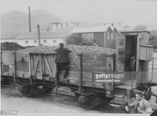 The process of orange growing the fruit is exported by train Messina Sicily circa 19351965