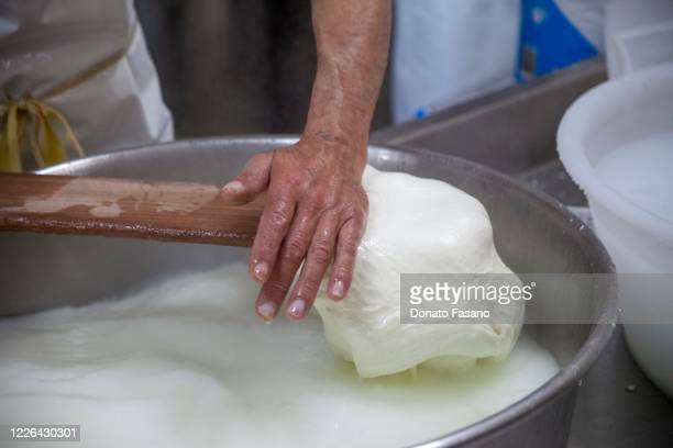 The processing of the pasta to create the mozzarella of the Capricci di Latte dairy on May 22, 2020 in Polignano, Italy. Restaurants, bars, cafes,...