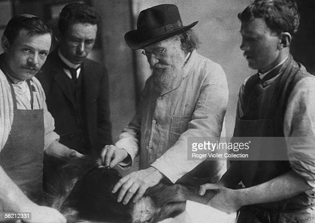 The professor Elie Metchnikov zoologist and Russian biologist inoculating a chimpanzee with a virus Paris Institut Pasteur
