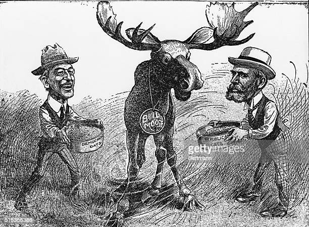The Progressive or Bull Moose Party organized by the followers of Theodore Roosevelt was wooed by both parties Wilson's Democrats and Hughes'...
