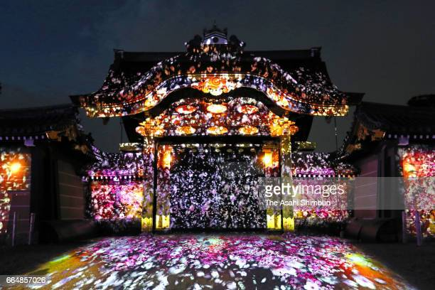 The projection mapping show of cherry blossoms at Nijo Castle's Karamon gate on April 3 2017 in Kyoto Japan The digital images show the cherry...