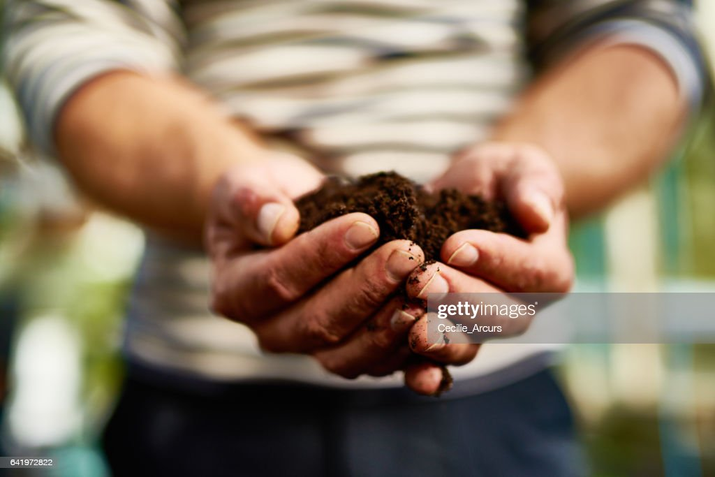 The promise of life : Stock Photo