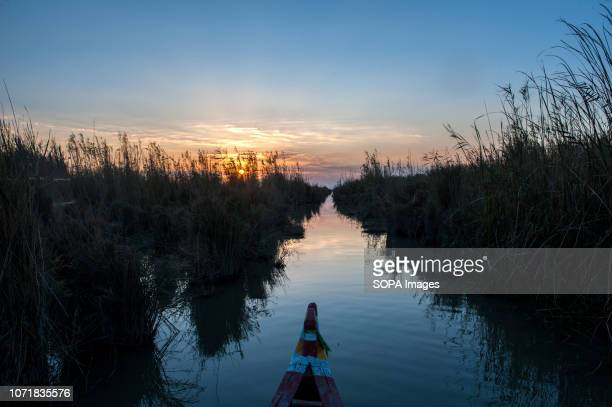The prow of a traditional canoe seen entering the Central Marsh of Southern Iraq at sun set. Climate change, dam building in Turkey and internal...