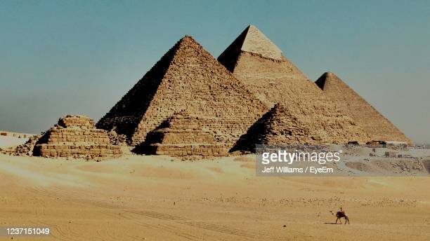 the pyramids of giza - egypt stock pictures, royalty-free photos & images