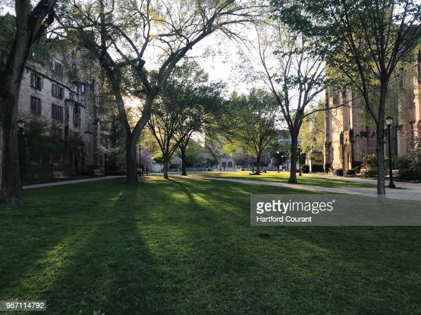 The quad at Yale University was quiet on May 9 2018 University officials said campus officers followed procedures this week when a white student...