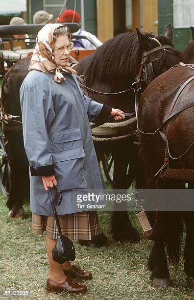 The Queen In Raincoat Silk Headscarf And Laced Up Brogue Shoes Waits With Prince Philip's Ponies At Windsor
