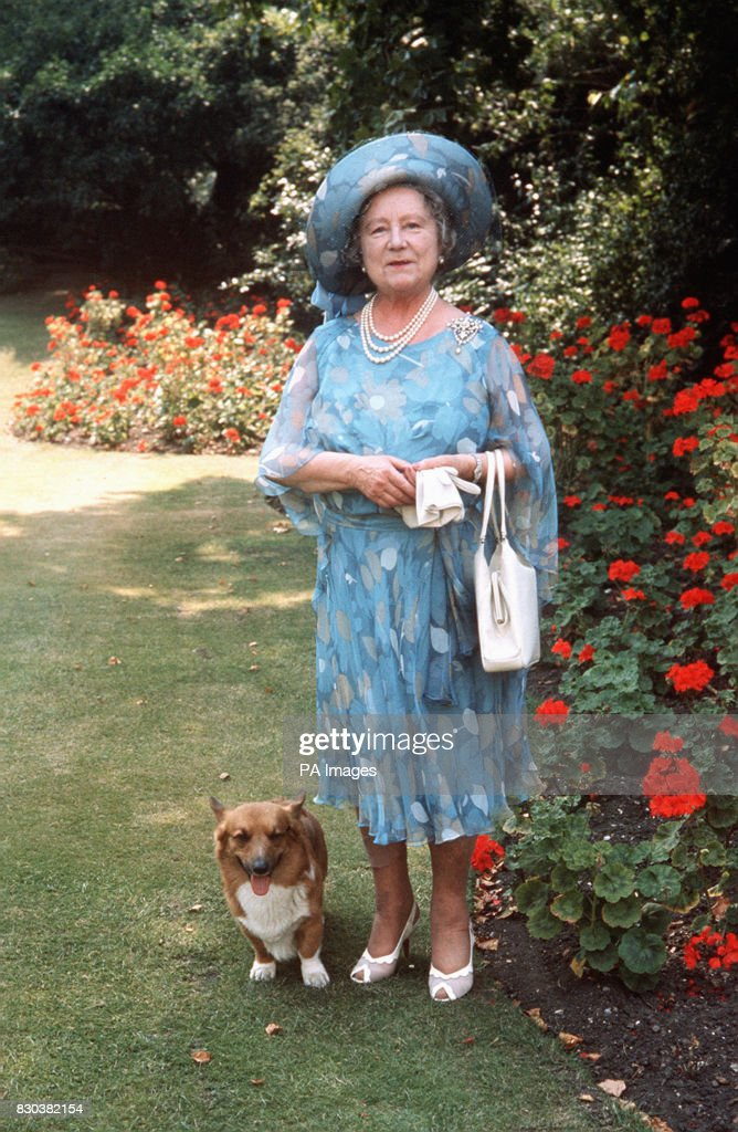 the-queen-mother-walking-in-the-grounds-of-her-residence-clarence-a-picture-id830382154