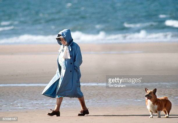 The Queen Mother Walking With One Of Her Friends And Her Corgi On The Beach In Norfolk