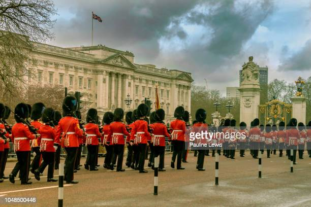 the queens guard - guardsman stock pictures, royalty-free photos & images