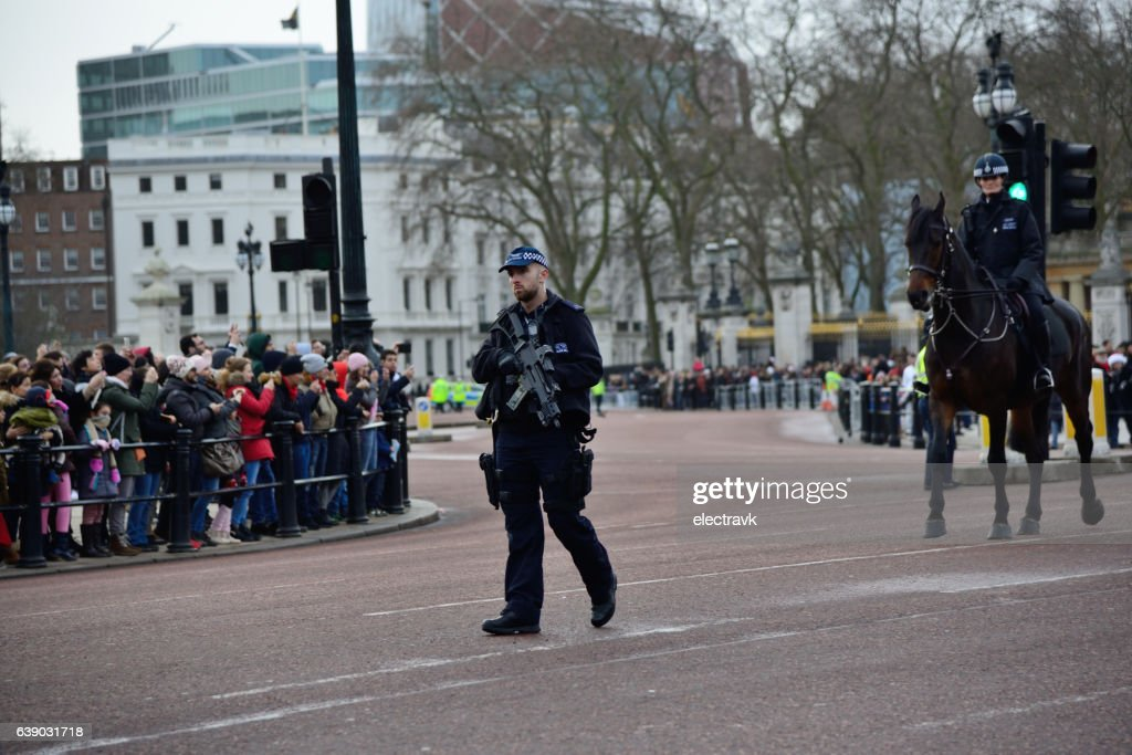 The Queen's Guard : Stock Photo
