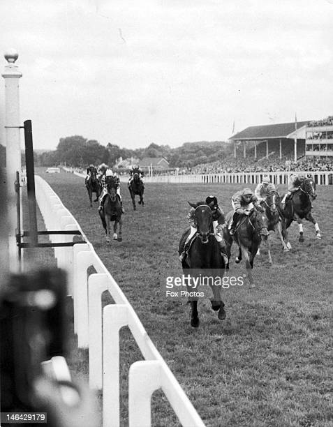 The Queen's racehorse Landau ridden by Sir Gordon Richards wins the Rous Memorial Stakes at Ascot 18th June 1954