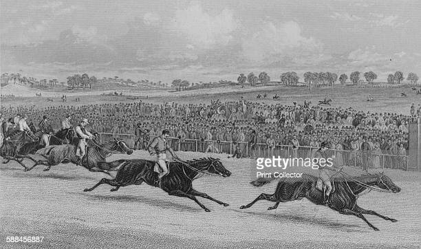 The Race for the St Leger 1851 Newminster's Year' circa 1851 Newminster British Thoroughbred racehorse who won the St Leger Stakes in 1851 After...