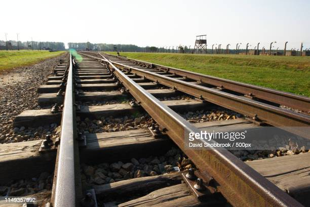 the rails are dated to - auschwitz stock pictures, royalty-free photos & images