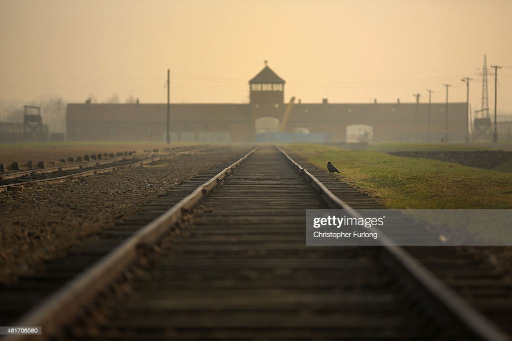 Preparations For The 70th Anniversary Of The Liberation Of Auschwitz-Birkenau : News Photo