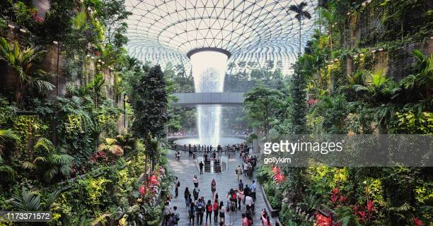 the rain vortex at jewel, changi airport, singapore - singapore city stock pictures, royalty-free photos & images