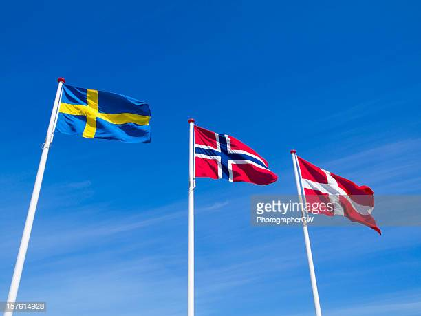 the raised flags or norway sweden and denmark - norwegian flag stock pictures, royalty-free photos & images