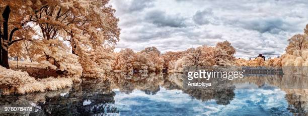 The Ramble and Lake, Central Park - in Infrared