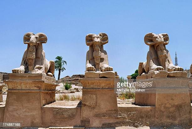 The ram-headed avenue of Sphinxes, which were built to protect the entrance at the Temple of Karnak in Luxor, Egypt. It is a vast city of temples...