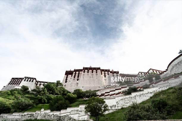 the rear of the potala palace in lhasa, tibet - lhasa apso bildbanksfoton och bilder