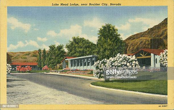 The reception drive up of Lake Mead lodge with flowering trees at Boulder City Nevada 1927