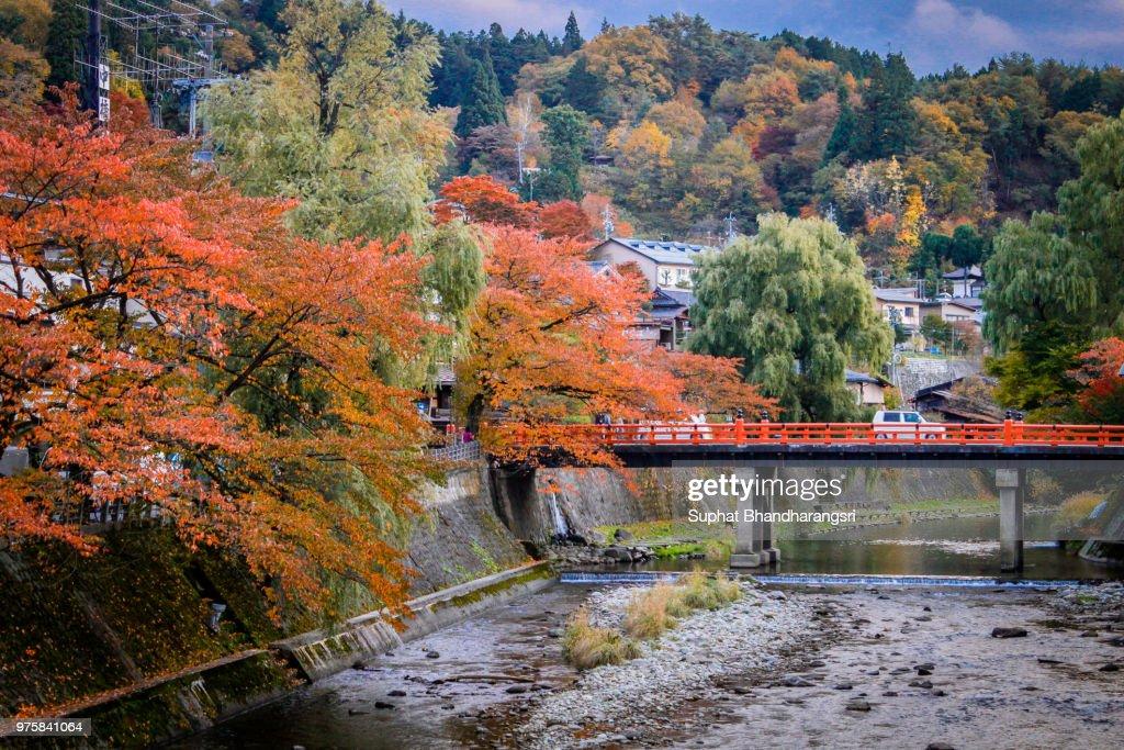 the red bridge : Stock Photo