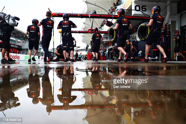 The Red Bull Racing team prepare in the Pitlane during practice for the F1 Grand Prix of Brazil at Autodromo Jose Carlos Pace on November 15, 2019 in...
