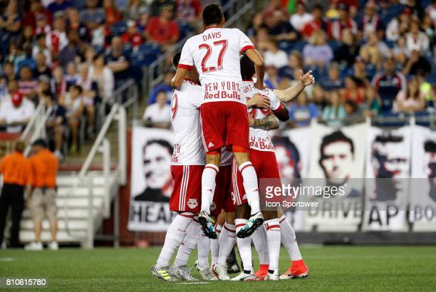 The Red Bulls celebrate the penalty kick goal from New York Red Bulls midfielder Daniel Royer during a regular season MLS match between the New...
