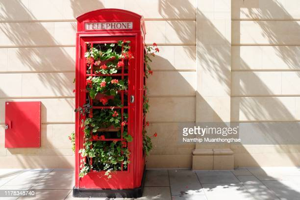 the red telephone box with the beautiful red flowers inside the box located the bath city, united kingdom. - cultura británica fotografías e imágenes de stock
