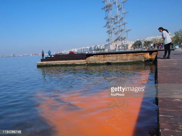 The red tide phenomenon in Greece Red tide phenomenon caused by algal blooms in Thessaloniki Greece on April 1 a discoloration of coastal waters due...