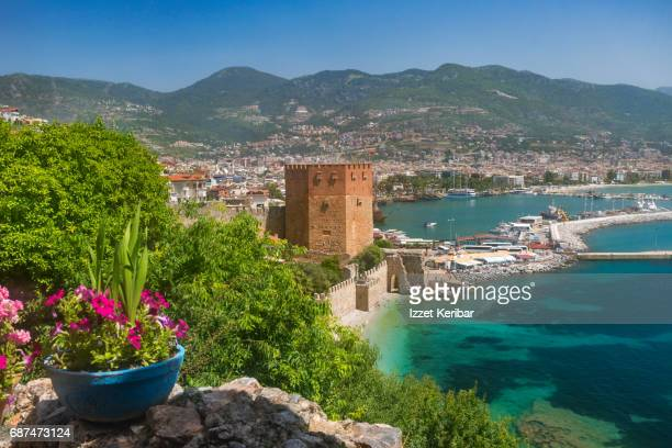 The red tower and port of  of Alanya, among flowers Antalya - Turkey