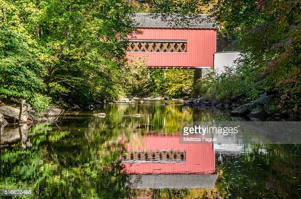 The Reflection of Wooddale Covered Bridge on the River