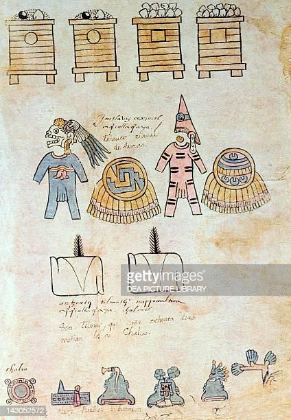 The registration of tributes from a copy of f45 of the Mendoza Code 16th Century Mexico City Biblioteca Nacional De Antropología E Historia