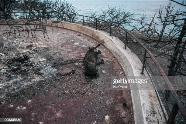 The remains of a burned dog are seen on the balcony of a burned house next to the point where 26 charred bodies were found following a deadly forest...