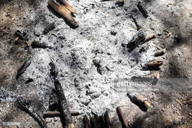 the remains of a campfire in huasca de ocampo, mexico - ash stock pictures, royalty-free photos & images