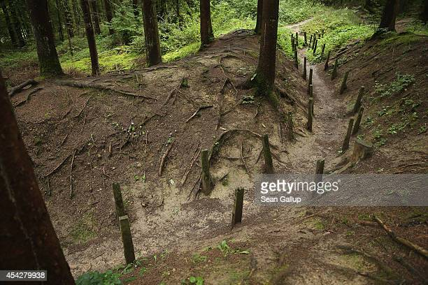 The remains of a former French communications and supply trench from the World War I Battle of Verdun stand on August 27 2014 near Verdun France The...