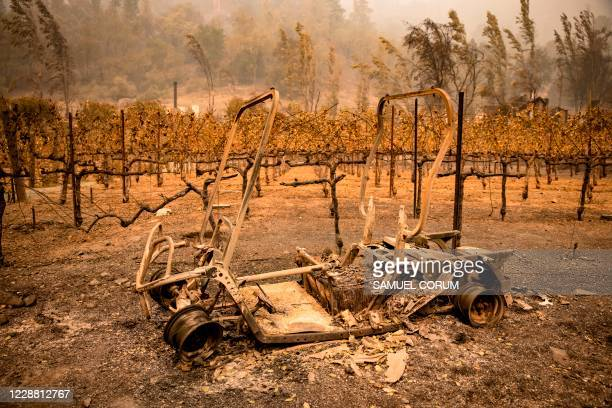 The remains of a golf cart burned by the Glass Fire sits next to a vineyard at Calistoga Ranch in Calistoga, Napa Valley, California on September 30,...