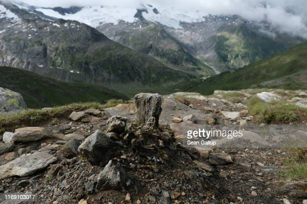 The remains of what appears to be a petrified tree stump lies high above valleys ground smooth by the retreating Schwarzensteinkees, Hornkees and...