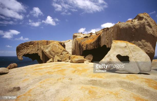 The Remarkable Rocks blocks of ancient granite sculpted into spectacular shapes by the weathering of the elements Flinders Chase National Park...