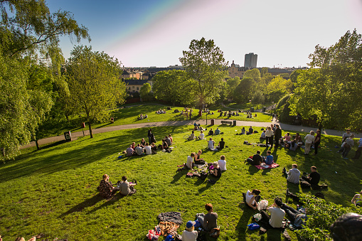 the rest of the people in Sweden are in Stockholm, center city, evening, green grass in the Park, picnic 668077094
