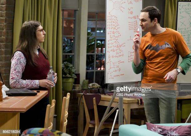 The Retraction Reaction Pictured Amy Farrah Fowler and Sheldon Cooper Leonard angers the university and the entire physics community after he gives...