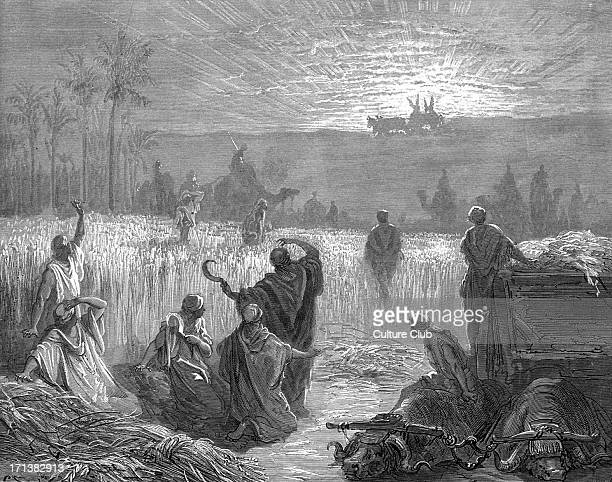 The return of the Ark of the Covenant to Beth Shemesh engraving by Gustave Doré The Israelites harvesting the wheat in the fields of Beth Shemesh...