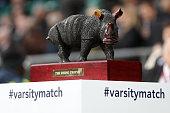 london england rhino trophy is seen